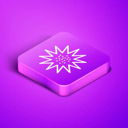 Isometric line Sea urchin icon isolated on purple background. Purple square button. Vector.