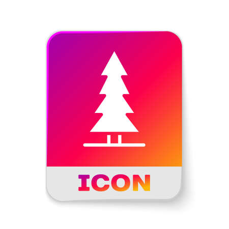 White Canadian spruce icon isolated on white background. Forest spruce. Rectangle color button. Vector Çizim