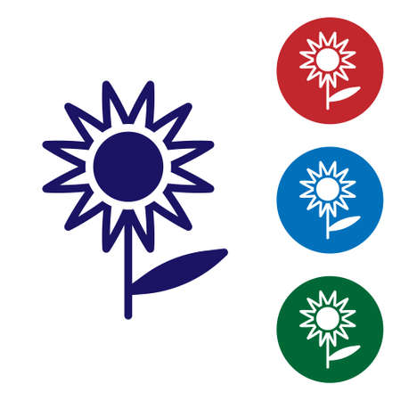 Blue Sunflower icon isolated on white background. Set icons in color square buttons. Vector