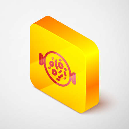 Isometric line Chicken tikka masala icon isolated on grey background. Indian traditional food. Yellow square button. Vector