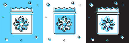 Set Pack full of seeds of a specific plant icon isolated on blue and white, black background. Vector