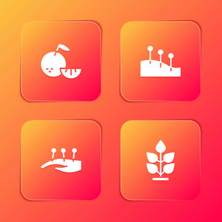 Set Citrus fruit, Acupuncture therapy, and Plant icon. Vector