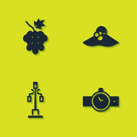 Set Grape fruit, Wrist watch, Street light and Elegant women hat icon. Vector 일러스트