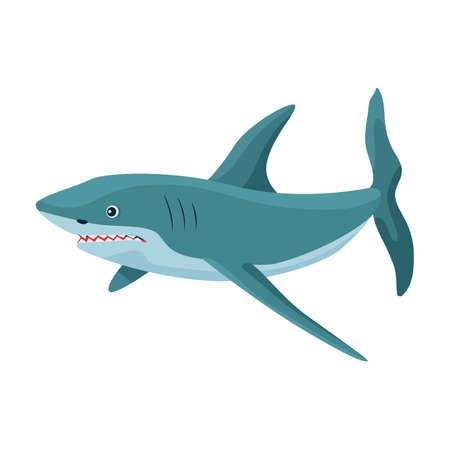 Shark cartoon vector icon.Cartoon vector illustration fish of sea. Isolated illustration of shark icon on white background.