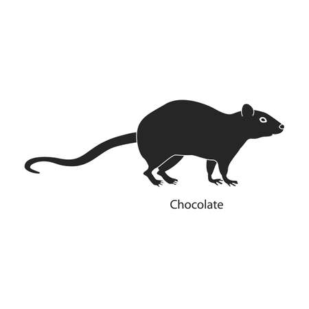 Mouse animal vector black icon. Vector illustration rat on white background. Isolated black illustration icon of mouse and rat.