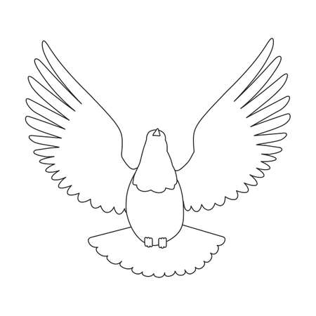 Dove vector outline icon. Vector illustration pigeon on white background. Isolated outline illustration icon of dove .