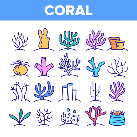 Corals Reefs And Seaweed Vector Linear Icons Set. Ocean Corals, Underwater Sea Life Outline Symbols Pack. Marine Flora And Fauna. Aquarium Natural Decoration Isolated Contour Illustrations Illustration