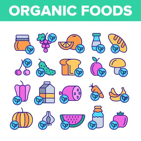 Organic Foods Vector Thin Line Icons Set. Organic Food, Fresh Fruits, Berries, Vegetables Linear Pictograms. Healthy Nutrition. Eco Dairy, Meat Products Organic Farming Produce Contour Illustrations