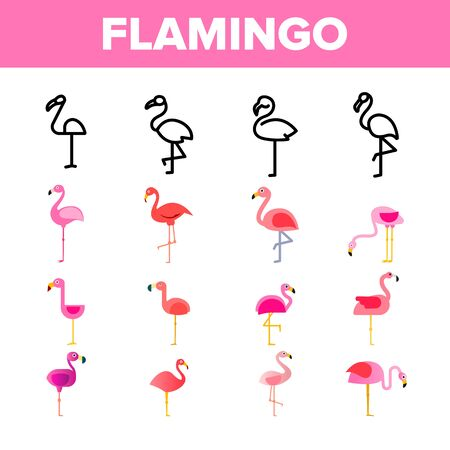 Collection Bird Flamingo Vector Sign Icons Set Thin Line. Standing Cute Pink Flamingo in Different Poses Linear Pictograms. Tropical Wildlife Monochrome And Color Contour Illustrations Фото со стока - 129401544