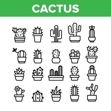 Cactus Domestic Plant Collection Icons Set Vector Thin Line. Different Cactus And Succulent With Thorn, Spike And Flower Concept Linear Pictograms. Houseplants Monochrome Contour Illustrations