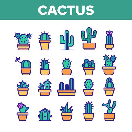 Cactus Domestic Plant Collection Icons Set Vector Thin Line. Different Cactus And Succulent With Thorn, Spike And Flower Concept Linear Pictograms. Houseplants Color Contour Illustrations