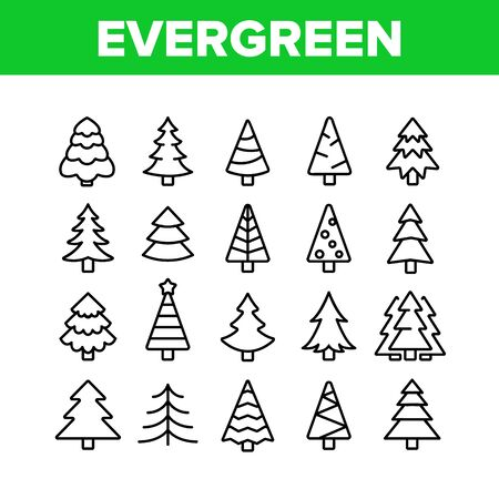Evergreen Pine Tree Collection Icons Set Vector Thin Line. Evergreen Fir With Needles, Christmas Ornament Concept Linear Pictograms. Nature Forest And Woodland Monochrome Contour Illustrations  イラスト・ベクター素材