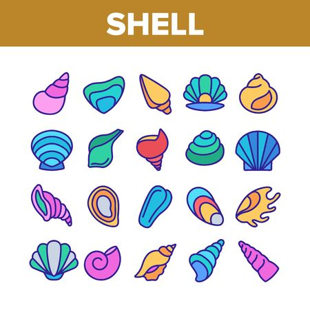 Shell And Marine Conch Collection Icons Set Vector Thin Line. Nature Ocean Shell For Shellfish, Aquatic Decorative Seashell And Cockleshell Concept Linear Pictograms. Color Contour Illustrations