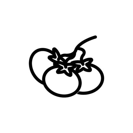 tomato icon vector. Thin line sign. Isolated contour symbol illustration
