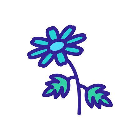 chrysanthemum icon vector. chrysanthemum sign. color isolated symbol illustration