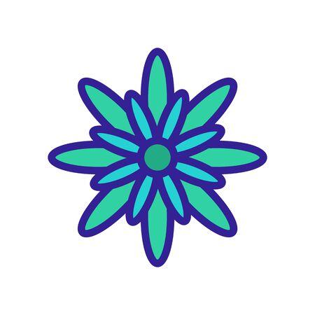 summer chrysanthemum icon vector. summer chrysanthemum sign. color isolated symbol illustration Çizim