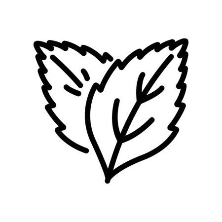 grass plant leaves peppermint icon vector outline illustration Illustration