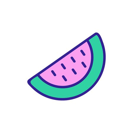 piece of watermelon icon vector. piece of watermelon sign. color symbol illustration Reklamní fotografie - 146384033
