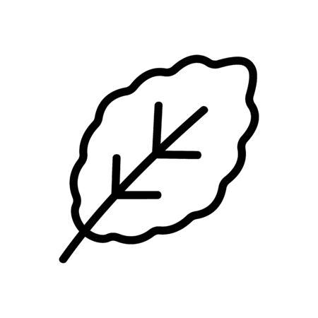 fresh arugula leaf icon vector. fresh arugula leaf sign. isolated contour symbol illustration