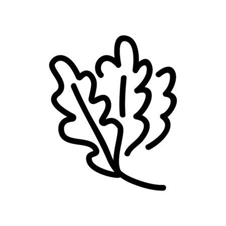 vegan plants arugula leaves icon vector. vegan plants arugula leaves sign. isolated contour symbol illustration