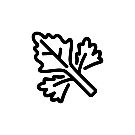 coriander leaf icon vector. coriander leaf sign. isolated contour symbol illustration
