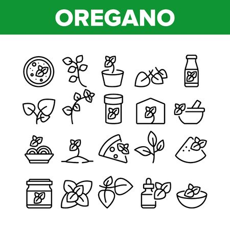 Oregano Herbal Plant Collection Icons Set Vector. Oregano Spice Branch In Greenhouse And Garden, In Pot And Bottle, Spice On Pizza And Soup Concept Linear Pictograms. Monochrome Contour Illustrations
