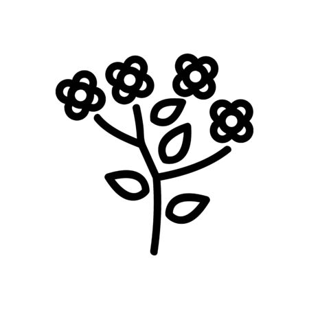 canola blossom flowers icon vector. canola blossom flowers sign. isolated contour symbol illustration