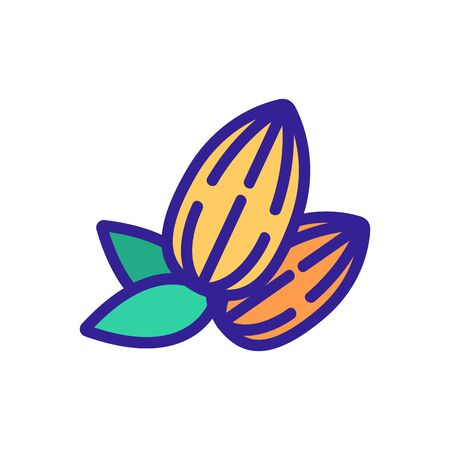 almond fresh nuts with leaves icon vector. almond fresh nuts with leaves sign. color symbol illustration 向量圖像