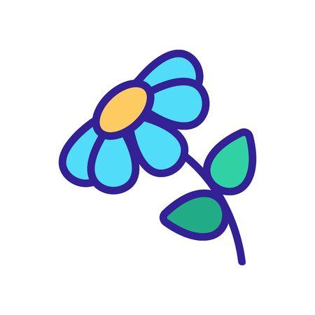 chamomile blossom flower icon vector. chamomile blossom flower sign. color symbol illustration