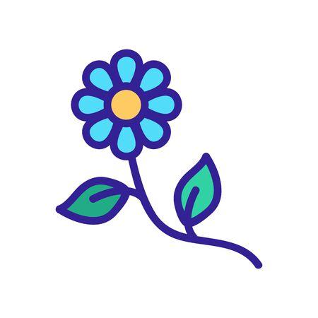 chamomile flower icon vector. chamomile flower sign. color symbol illustration