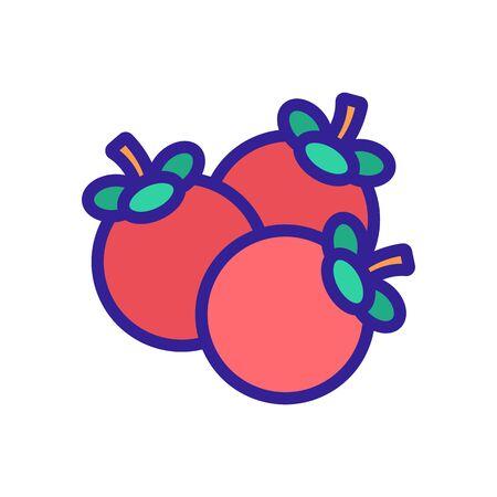mangosteen fruit heap icon vector. mangosteen fruit heap sign. color symbol illustration