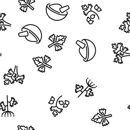 Coriander Herbal Plant Vector Seamless Pattern Thin Line Illustration