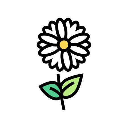 chamomile flower aromatherapy color icon vector. chamomile flower aromatherapy sign. isolated symbol illustration