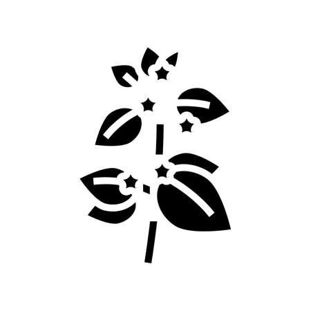 melissa herbal aromatherapy glyph icon vector. melissa herbal aromatherapy sign. isolated contour symbol black illustration