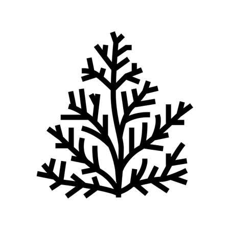 cedar plant aromatherapy glyph icon vector. cedar plant aromatherapy sign. isolated contour symbol black illustration