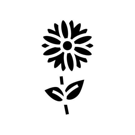chamomile flower aromatherapy glyph icon vector. chamomile flower aromatherapy sign. isolated contour symbol black illustration