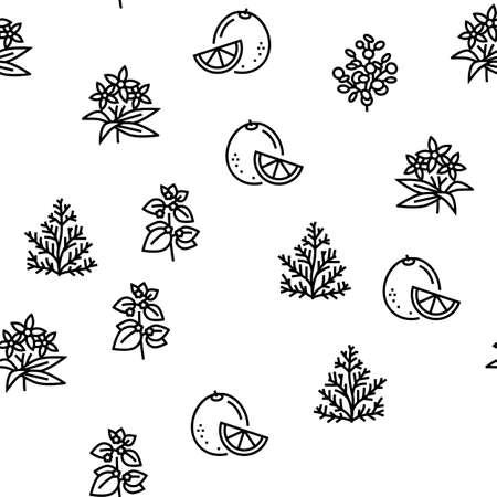 Aromatherapy Herbs Vector Seamless Pattern Thin Line Illustration