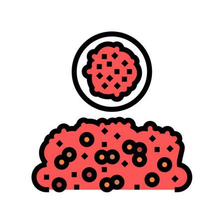 dagoussa groat color icon vector. dagoussa groat sign. isolated symbol illustration