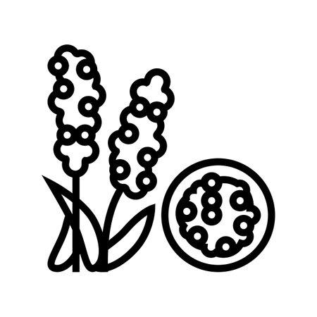chumiz groat line icon vector. chumiz groat sign. isolated contour symbol black illustration