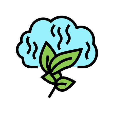 aroma plant phytotherapy color icon vector. aroma plant phytotherapy sign. isolated symbol illustration