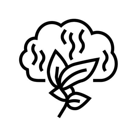 aroma plant phytotherapy line icon vector. aroma plant phytotherapy sign. isolated contour symbol black illustration Векторная Иллюстрация