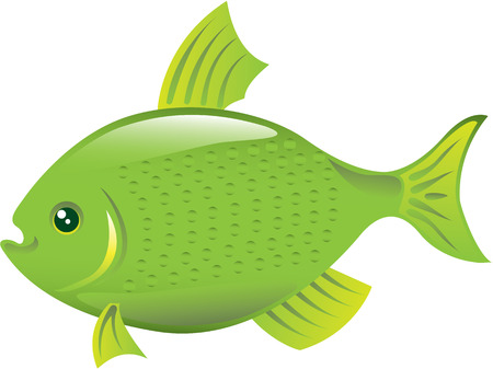 gash: Green fish vector illustration clip-art image