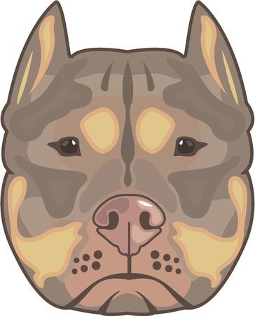stafford: Pitbull vector illustration clip-art image eps file Illustration