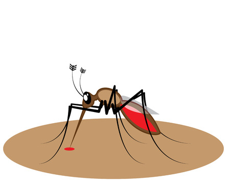 Blood sucking insect vector image clip-art
