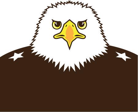 general: Eagle General vector illustration clip-art image