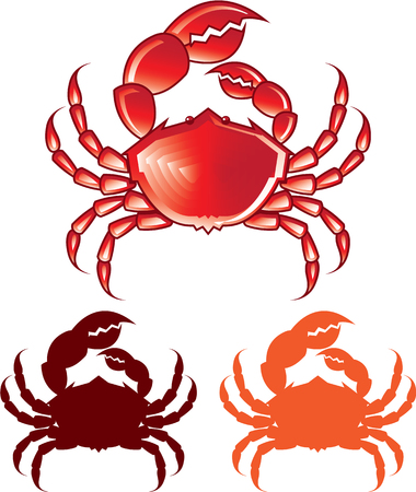 whole creature: Jumbo red crab format vector image