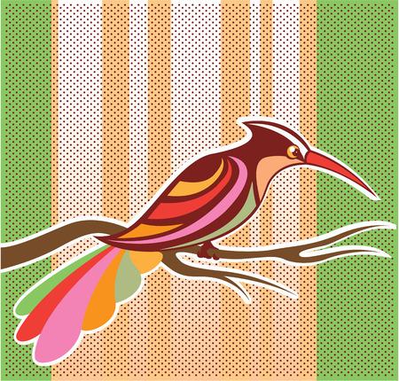 drift: Color bird vector illustration clip-art image