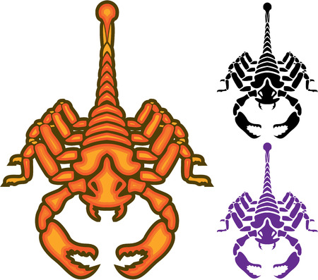 Scorpion vector illustration clip-art image