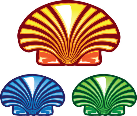 Sea shell vector illustration clip-art image
