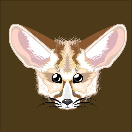 Fennek fox vector illustration clip-art image